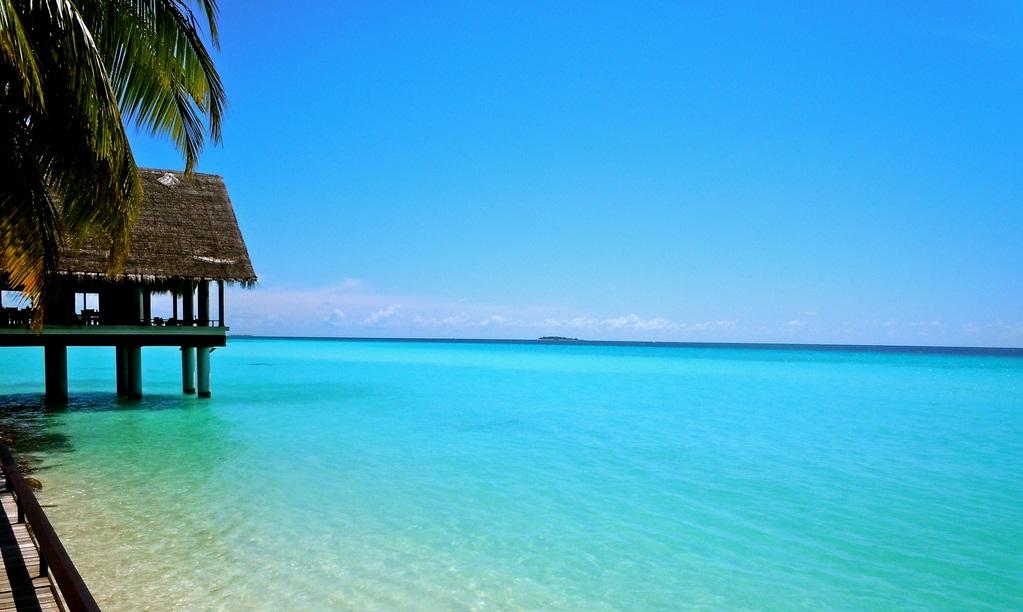 mm_maldivi